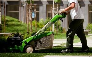 01_manutencao-lisboa-relvado-relva-plantas-empresa-jardinagem-jardim-rega-sebes-podas-300x187