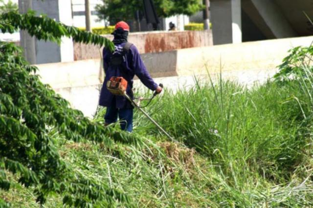 Limpeza de Terrenos - - Jardinagem Chambel em Rio Maior